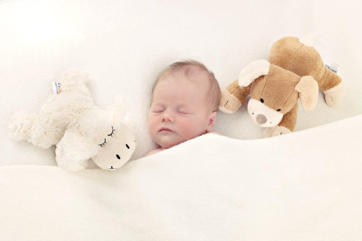 Neugeborenes schlaeft mit Spielzeug waehrend des Neugeborenen Fotoshootings im Carmen Bergmann Studio in der Rosenheimer Strasse in Muenchen